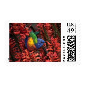 Rainbow Lorkieet $0.47 (1st Class) stamps