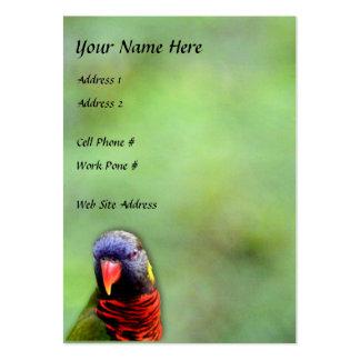 Rainbow Lory 1 Profile Card Large Business Card