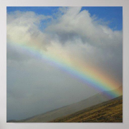 rainbow Ma alaea harbor maui Posters