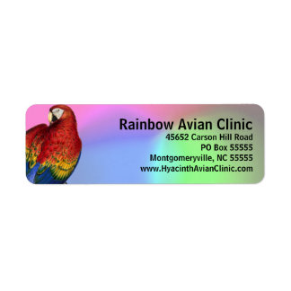 Rainbow Macaw with Colorful Background Label