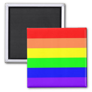 Rainbow Magnent Magnet