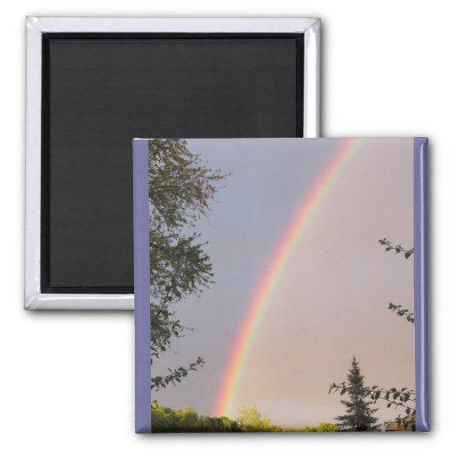 Rainbow ~ magnet
