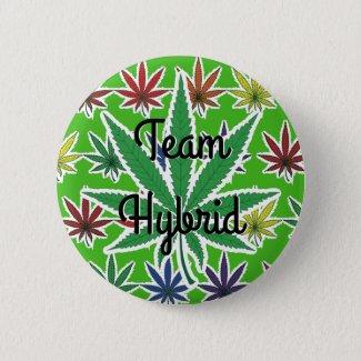 Rainbow Marijuana Leaf Team Hybrid Pinback Button