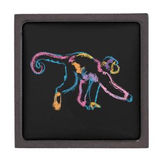 Rainbow Monkey Gift Box