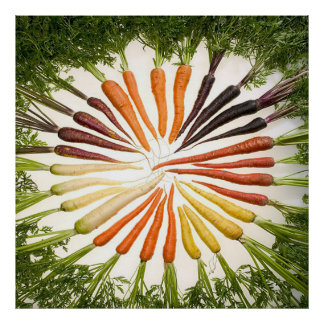 Rainbow Multicolored Carrots Square Poster