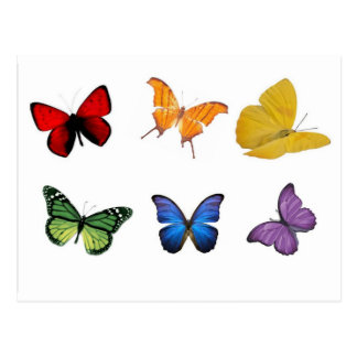Rainbow of Butterflies Post Cards