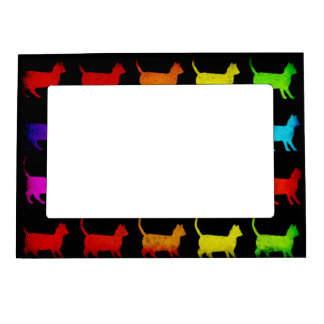 Rainbow Of Cats Picture Frame Magnets