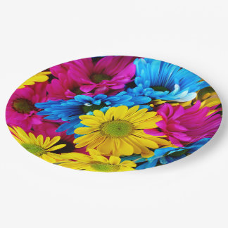 Rainbow of Daisies Paper Plate