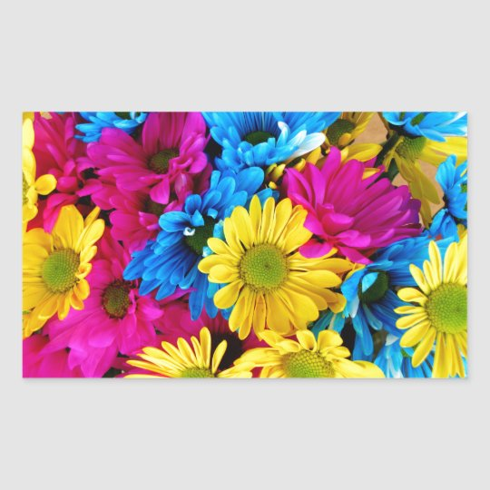 Rainbow of Daisies Rectangular Sticker