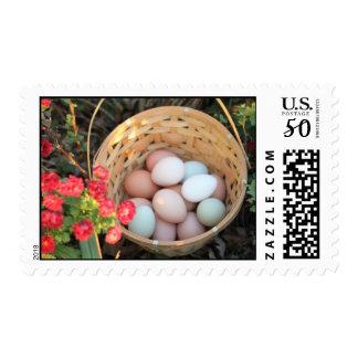 Rainbow of Eggs Postage