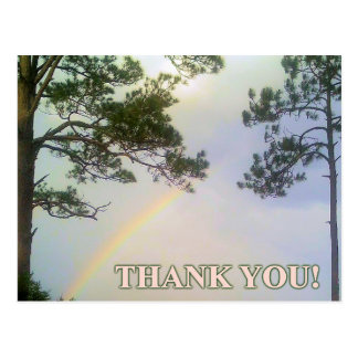 Rainbow of Gratitude Postcard