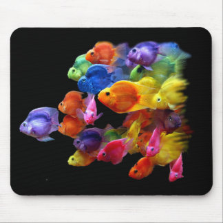 Rainbow of Parrotfish Mouse Pads