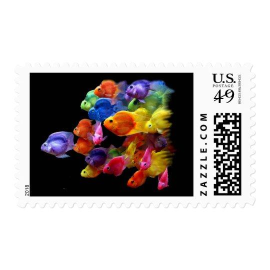 Rainbow of Parrotfish Postage