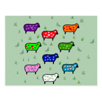 Rainbow Of Sheep Postcard