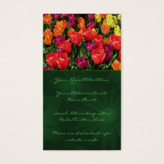 Rainbow Of Tulips Business Card