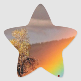 RAINBOW ON A COUNTRY ROAD WITH TREE STAR STICKER