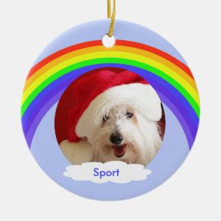Rainbow on Blue Dog Memorial Christmas Ornament