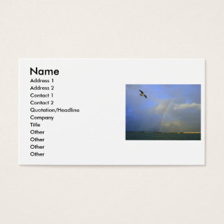 Rainbow over river bridge with seagull photo business card