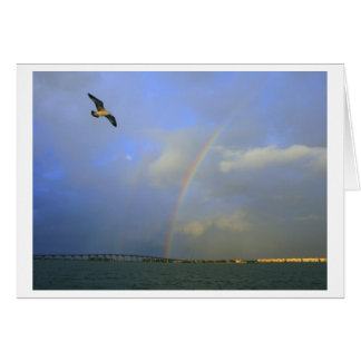 Rainbow over river bridge with seagull photo stationery note card