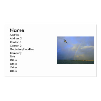 Rainbow over river bridge with seagull photo Double-Sided standard business cards (Pack of 100)