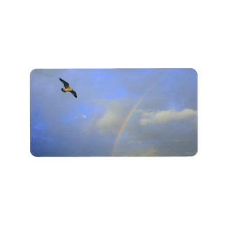 Rainbow over river bridge with seagull photo address label