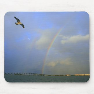 Rainbow over river bridge with seagull photo mousepad