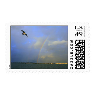 Rainbow over river bridge with seagull photo stamps