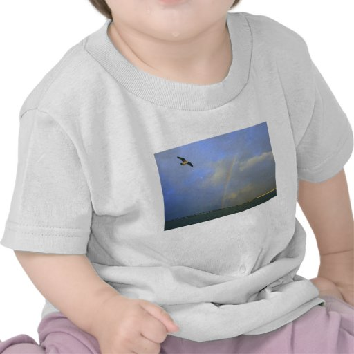 Rainbow over river bridge with seagull photo t shirt
