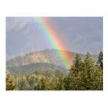 Rainbow Over the Mountains Postcard