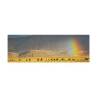RAINBOW OVER THE NAVAJO NATION CANVAS PRINT