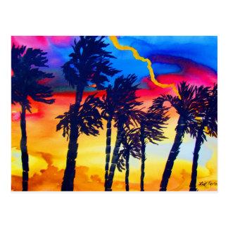 Rainbow Palms Postcard