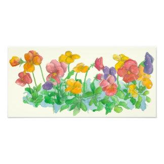 Rainbow Pansies Print Floral Watercolor Painting Photo Print