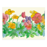 Rainbow Pansy Flowers Postcard Watercolor Art