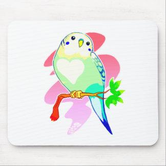 Rainbow Parakeet Mouse Pad