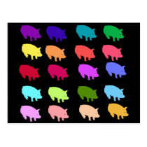 Rainbow Pigs Postcard