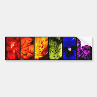 Rainbow Plant Life-Bumper Sticker