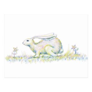 Rainbow Rabbit Post Card