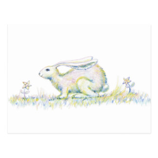 Rainbow Rabbit Postcard