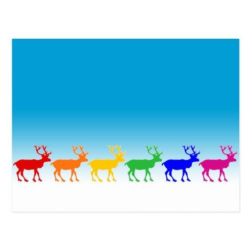 Rainbow Reindeer Postcard