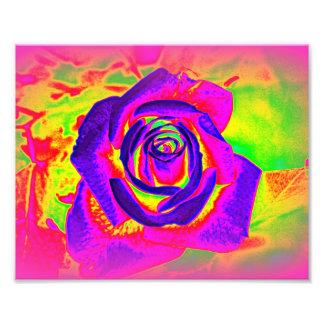 Rainbow Rose Abstract Photo Print