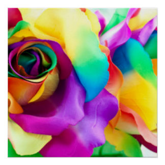 Rainbow Rose Botanical Poster