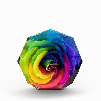Rainbow Rose by JanLynn Acrylic Award
