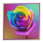 Rainbow Rose Flower Gallery Wrapped Canvas