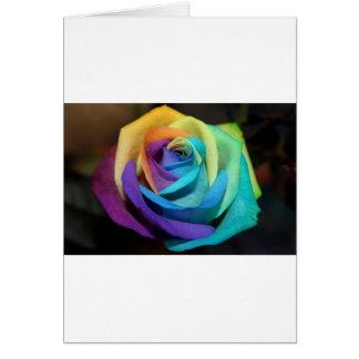 Rainbow Rose Flowers Peace Love Destiny Card