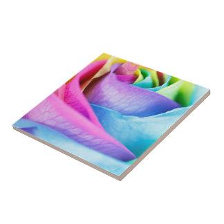 Rainbow Rose Macro Tile