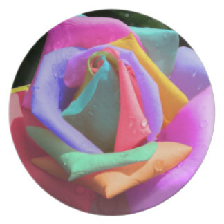 Rainbow Rose Plate