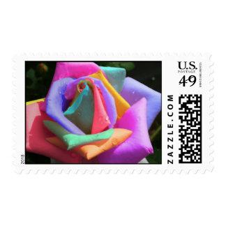 Rainbow Rose Postage Stamp