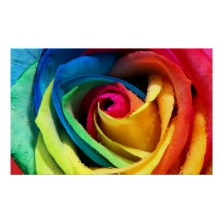 Rainbow Rose Print