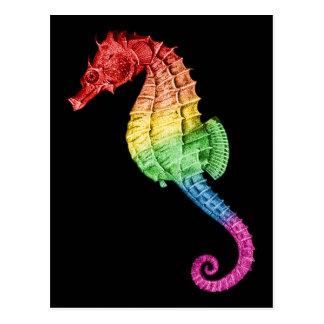 Rainbow Seahorse Postcard