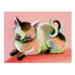 Rainbow Sherbert Kitty Kat Postcards